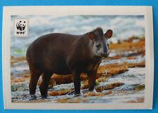 FIGURINA COOP WWF IL GIRO DEL MONDO - N.142 - TAPIRO DEL SUDAMERICA