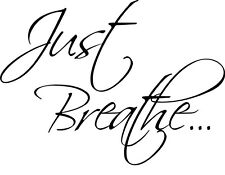 JUST BREATHE Wall Sticky Decal Vinyl Quote Lettering Words Home Decor 24""