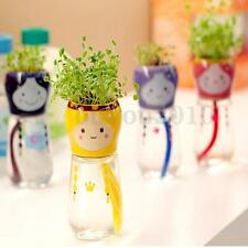 Garden Home Office Decor Cute Emoji Doll Self Watering Planter Flower Pot Straw