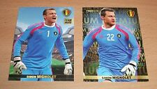 PANINI CARREFOUR LOT 8 38/180 - BELGIAN RED DEVILS TOUS ENSEMBLE - MIGNOLET