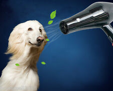 Pet Dog Grooming High Power & Speed Professional Hair Dryer Black &$