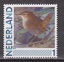 NVPH Nederland Netherlands MNH singing bird winterkoning, wren, abadejo, mignon