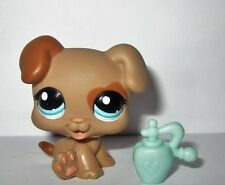 Littlest Pet Shop LPS Brown Boxer Puppy Dog w/Perfume Bottle Blue Eyes 1482 HTF