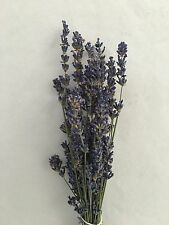Dried Lavender 2016 Crop Fragrant Flowers Perfume Potpourri Bunch - Home Grown