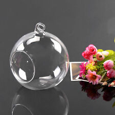 Hanging Glass Ball Vase Flower Plant Pot Terrarium Container Decor  GO