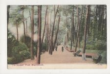 The Invalids Walk Bournemouth [JWS 81] 1906 Postcard 800a