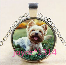 Vintage Cute Dog Cabochon Tibetan silver Glass Chain Pendant Necklace #3565
