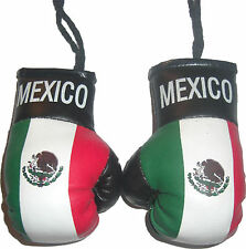 Mexico Country Flag Mini Boxing Gloves Pair Hang Automobile Mirror