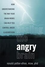 Healing the Angry Brain: How Understanding the Way Your Brain Works Can Help Yo