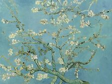 "Van Gogh, Branches With Almond Blossoms, 8""x10.5"" Canvas Art Print"