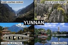 SOUVENIR FRIDGE MAGNET of YUNNAN CHINA