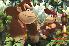DONKEY AND DIDDY KONG single 24x36 poster SUPER NINTENDO BRAND NEW VIDEO GAMES!!