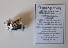dd When Pigs can fly Pocket token Charm Ganz pig figurine be strong have faith