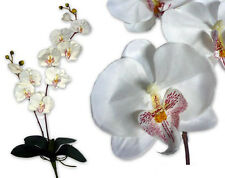 "28"" Artificial Flower Silk Phalaenopsis Orchid Spray plants Home decor - White"