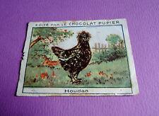 LES POULES HOUDAN CHROMO CHOCOLAT PUPIER JOLIES IMAGES 1930