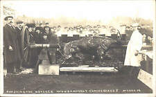 Uttoxeter photo. Roasting the Bamford Bullock by A. McCann, Uttoxeter. Ox Roast.