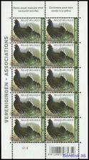 Belgium**GROUSE-TETRAS LYRE-BIRDS-Sheet 10vals-Korhoen-Vogel-Oiseau-2013-MNH