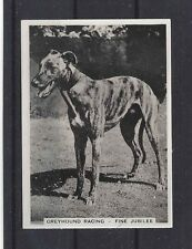 1930s UK Dog Art Full Body Study Ardath Cigarette Trade Card GREYHOUND RACING