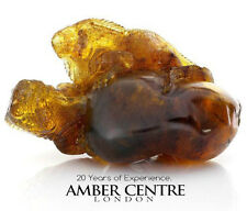 Messicano Amber Lucertole Carving Super Qualità collectible Item RRP £ 9000!! - ot5228