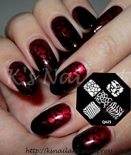 Crazing Zebra Nail Art Stamping plaque Template Ongle decoration Manucure- QA25