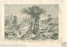 Landscape Canoe Lac Toronto Lake Ontario Canada GRAVURE OLD PRINT 1860