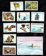 Hudson Bay Fur Trappers Nestle 1955 Card Set Canada Eskimo Hunting Husky Dogs
