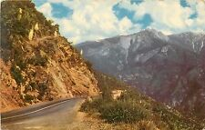 Sequoia National Park Union Oil Company Sierra Nevada CA California Postcard
