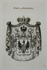 1846 Wappen von Radziwill Kupferstich Tyroff