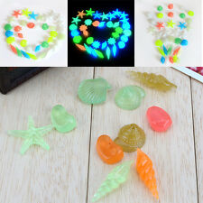 10PCS Glow in the Dark Stone Luminous Sea Conch Shells Aquarium Fish Tank Decor1
