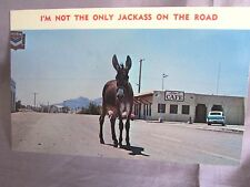 """JACKASS ON THE ROAD "" SUTLE ""HUMAN V. ANIMAL"" BEFORE ROAD RAGE  1965 POSTCARD"