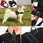 Panda Soft Padded Large Dog Pet Adjustable Safety Harness Chest Size S M L XXL