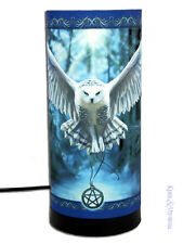 "Anne Stokes Mood Lamp: ""Awaken Your Magic"" Owl Pagan Wicca"