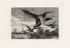 "ORIGINAL Auguste Andre LANCON 1800s Etching ""Hawks in Flight"" Signed FRAMED COA"
