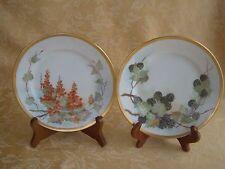 Signed Vintage Set of 2 B&Co France Porcelain Handpainted Fruit Plates Gold Trim