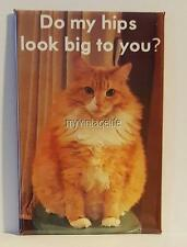 "FAT FLUFFY ORANGE CAT DO MY HIPS LOOK BIG 2"" x 3"" Fridge MAGNET Humor Funny meme"