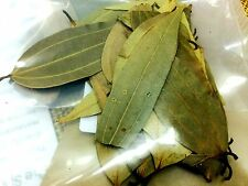 Bay Leaves, Indian Tej Patta.10g £1.88 The Spiceworks-Hereford Herbs & Spices