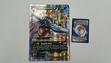 1X JUMBO OVERSIZED M Mega Sharpedo XY200 Holo FOIL -Black Star Promo- NM Pokemon