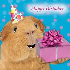 Guinea Pig Party Hat Birthday present Happy Birthday with love card glitter