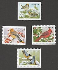 US Songbirds in Snow forever set (4 stamps) MNH 2016
