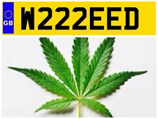 W222 EED WEED WEEDS GANJA DEALER HERB SMOKER SPLIFF GREEN GARDENER NUMBER PLATE
