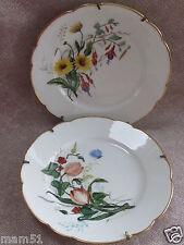 Deux belles assiettes décoration porcelaine Limoges décor floral main