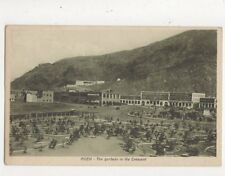 Aden The Gardens In The Crescent Vintage Postcard 697a