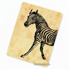 Zebra #1 Deco Magnet, Decorative Fridge Décor Africa Wild Animal Mini Gift
