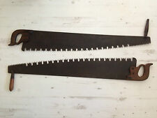 SUPERB PAIR OF 2 ANTIQUE LUMBERJACK SAWS 42 INCH BLADE TATTOO SHOP DISPLAY SHED