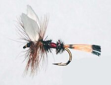12 Pack Trout Dry Fly Royal Coachman Size 14