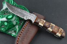 "6.25"" DAMASCUS Steel Handmade blade Stag & wood Handle hunting Knife w/Sheath 09"
