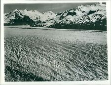 Alaskan Glacier on Kenai Peninsula Coast Original News Service Photo