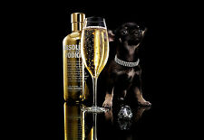 Bling Bling    Absolute Vodka Diamonds and Vodka   A3 Art Poster Print