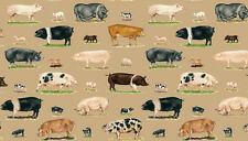 "Farm Pigs & Piglets 100% cotton fabric Makower Size 22"" x 18"" larger available"