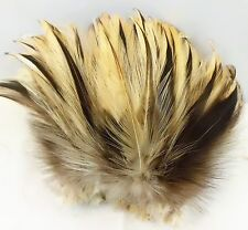 "50+ NATURAL BADGER ROOSTER NECK CRAFT MILLENARY FEATHER 5""-6""L"